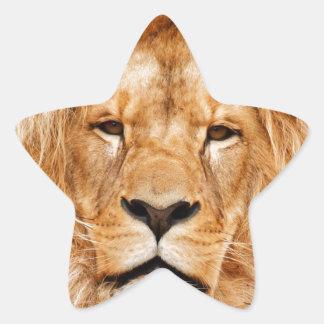 Lion Face Photograph Sticker