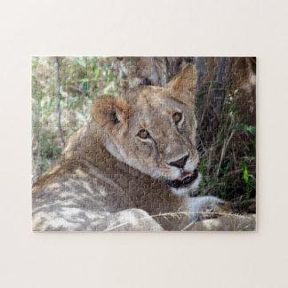 lion face puzzle