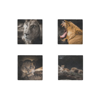 Lion Family and cub nature Photo Magnets