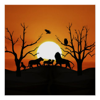 Lion family at sunset Africa Poster