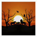 Lion family at sunset poster