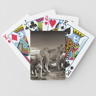 Lion Family Bicycle Playing Cards