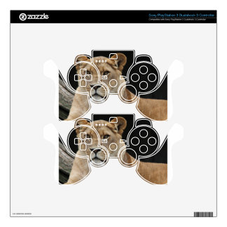 Lion Female Lying Down Decal For PS3 Controller