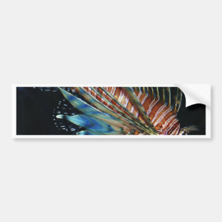 Lion fish bumper sticker