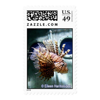 Lion Fish Swims By Postage
