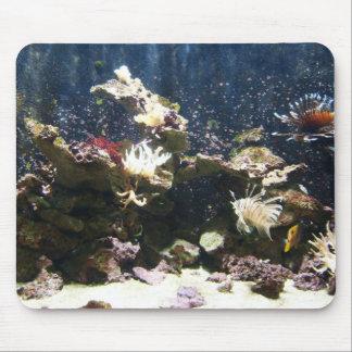 Lion fish Yellow Tang saltwater tank Mouse Pad