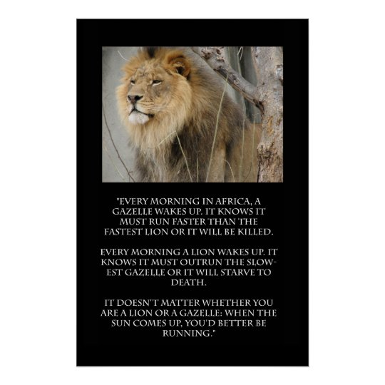Lion Gazelle Running Quote Poster Zazzle