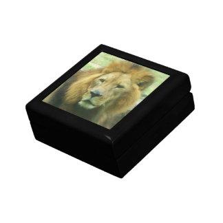 Lion Giftbox Keepsake Box