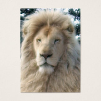 Lion Head business card white chubby