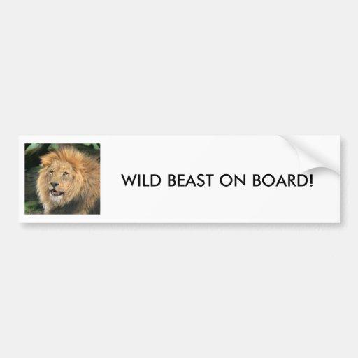 lion head male beautiful photo bumper sticker
