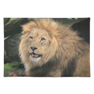 Lion head male beautiful photo placemat