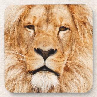 Lion head male beautiful photo portrait, gift beverage coasters