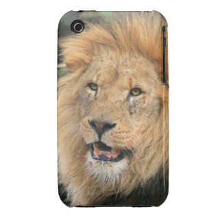 Lion head male handsome iphone 3G case mate barely