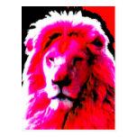 Lion Head Pink postcard