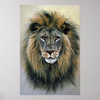 Lion (head study) poster