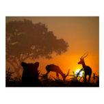 Lion Hunt Postcard
