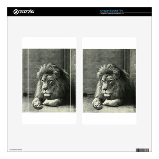 Lion Illustration Skins For Kindle Fire