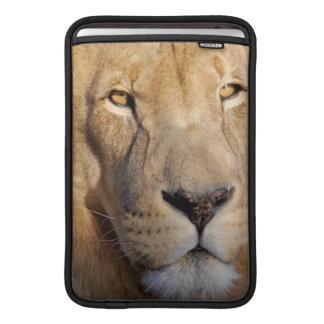 "Lion Images 11"" MacBook Sleeve"