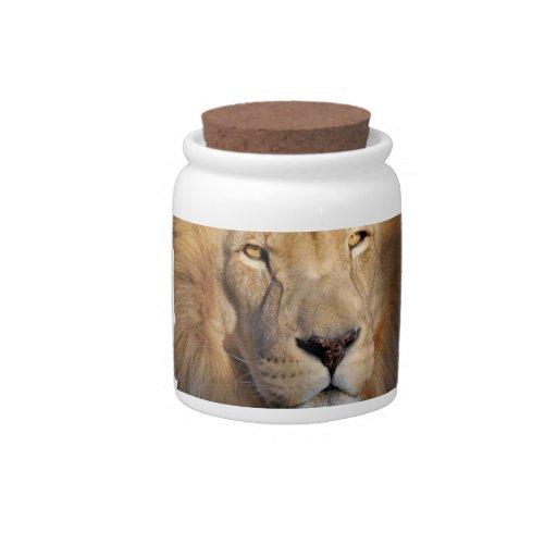 Lion Images Candy Jar