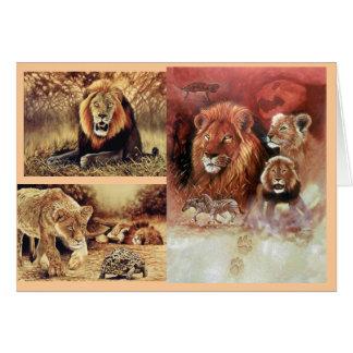 lion images card