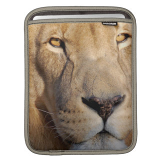 Lion Images iPad Sleeve