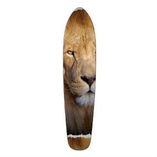 Lion Images Skate Deck