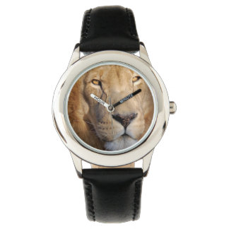 Lion Images Watch
