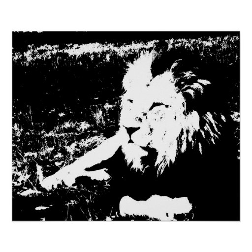 Lion in Black and White Poster