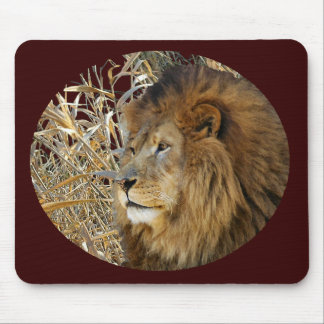 LION IN GRASS MOUSE PAD