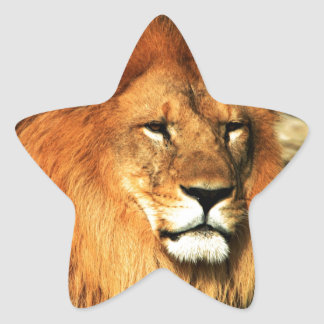 Lion in the Nature Sticker