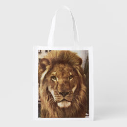 lion in town grocery bag