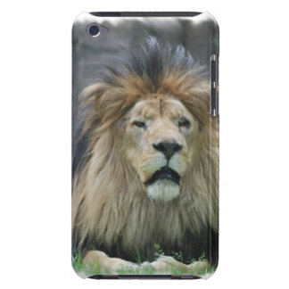 Lion  iTouch Case iPod Case-Mate Cases