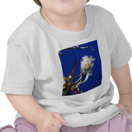 lion.jpg camiseta