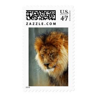 Lion King Postage Stamp