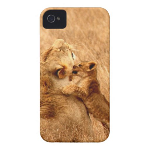 lion kiss and love mom iPhone 4 cover