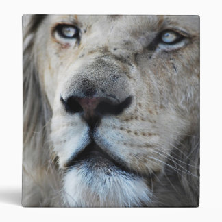 Lion listens to my heartbeat binders