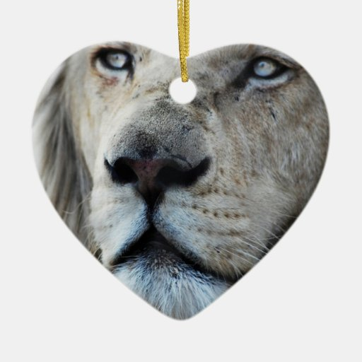 Lion listens to my heartbeat christmas ornaments