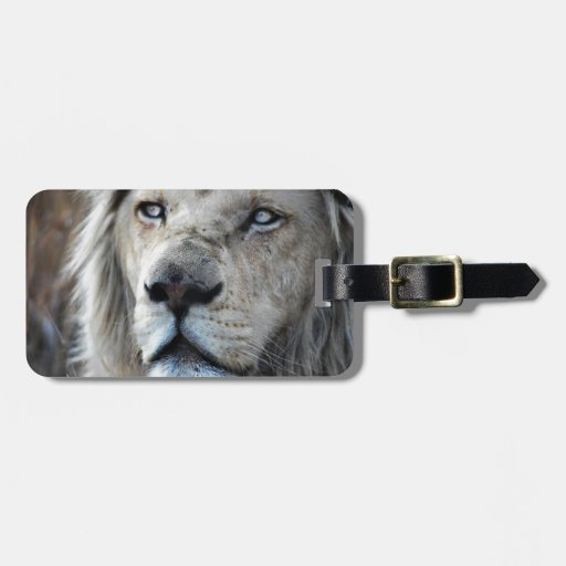 Lion listens to my heartbeat luggage tag