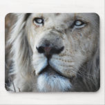 Lion listens to my heartbeat mousepads