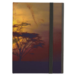 Lion Looking Over African Sunset iPad Cases
