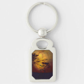 Lion Looking Over African Sunset Keychain