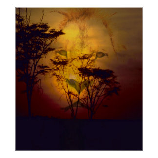 Lion Looking Over African Sunset Poster