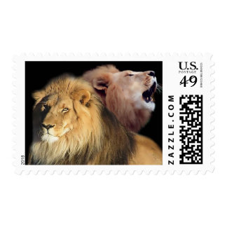 Lion Lord Of The Jungle Stamp