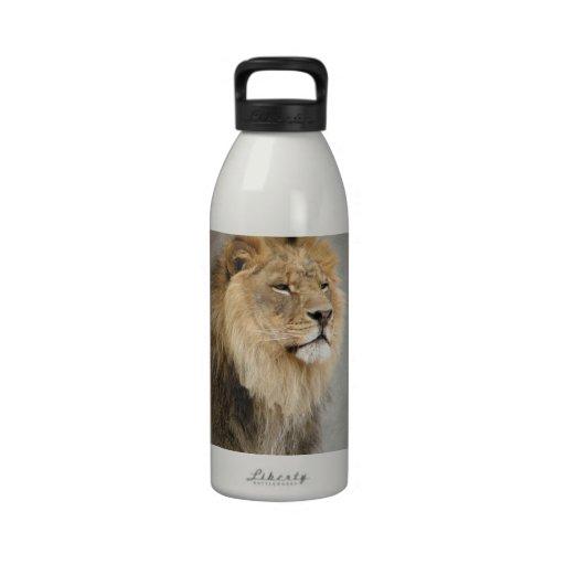 Lion Lovers Art Water Bottle
