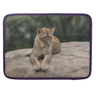 Lion Macbook Pro case