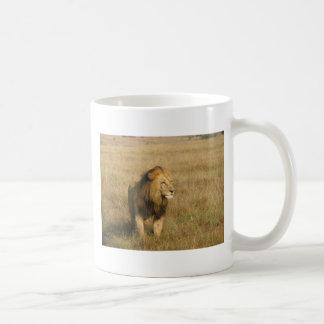 Lion - Male Female Mug