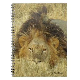Lion Male Journal Spiral Notebook