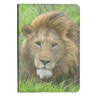 Lion Male Portrait, East Africa, Tanzania, Kindle Case