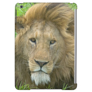 Lion Male Portrait, East Africa, Tanzania, iPad Air Cover