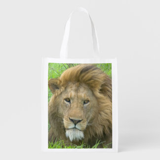 Lion Male Portrait, East Africa, Tanzania, Market Tote